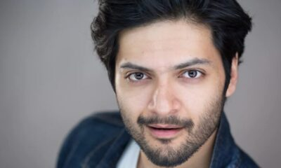 Ali Fazal Decodes Mirzapur's Success in India, Says 'We Are a Country That Loves Championing Underdogs'