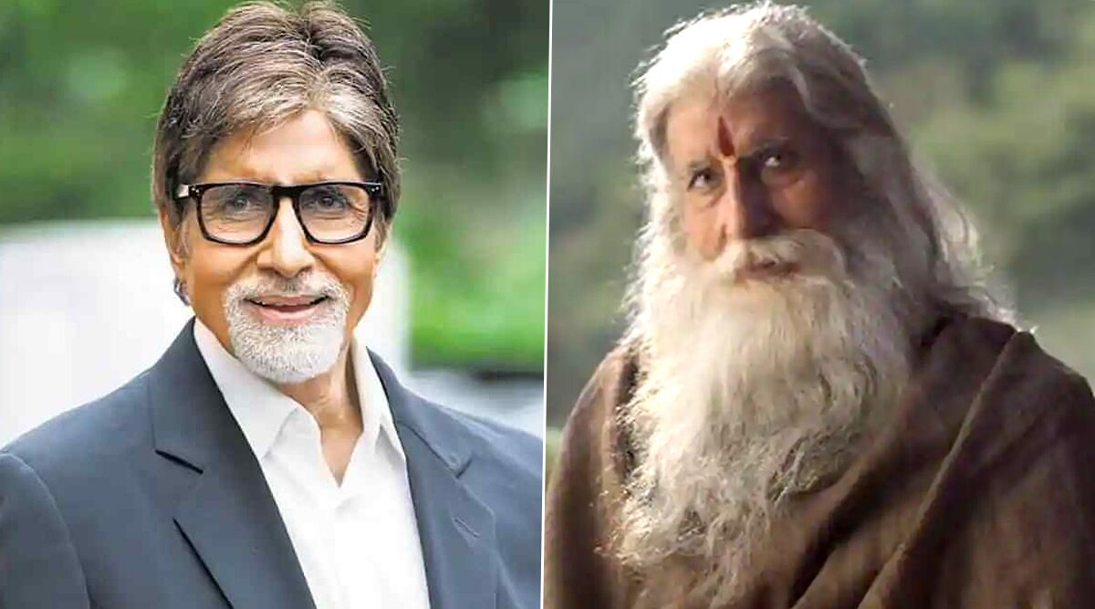 Amitabh Bachchan in Prabhas 21! From Amrithadhare to Sye Raa Narasimha Reddy, List of South Films The Legendary Actor Has Worked In Before