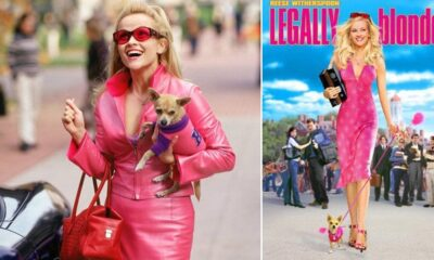 Reese Witherspoon's Legally Blonde 3 in Works at MGM Studios; Film Heads for May 2022 Release Date