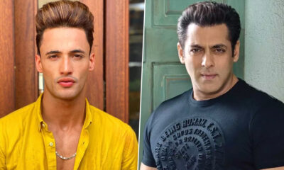 Asim Riaz Rubbishes Rumours of Being a Part of Salman Khan's Kabhi Eid Kabhi Diwali, Says 'There Is Nothing Like That for Sure'