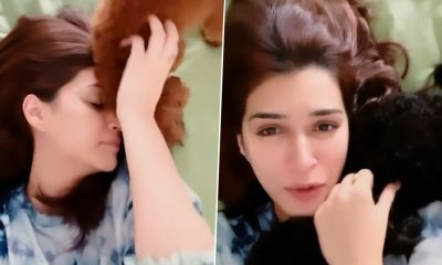 Kriti Sanon Reveals Her Special 'Morning Facial' Routine Involves Fur, Kisses and Licks! (Watch Video)